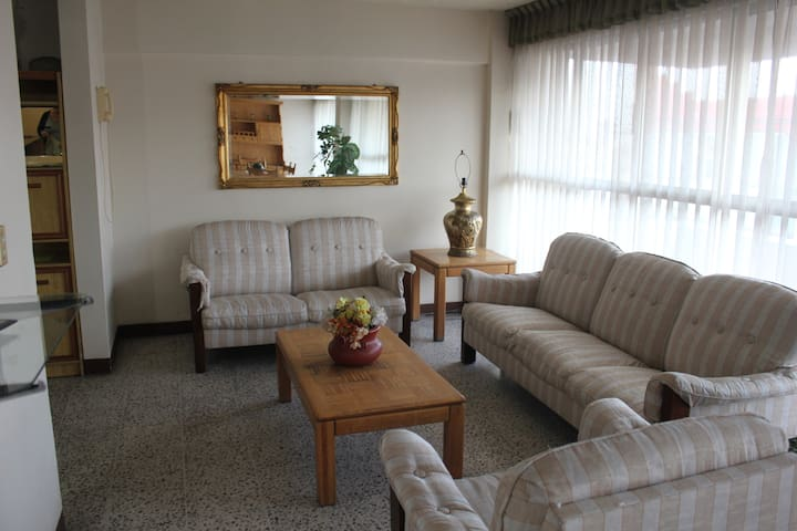 Modern Apartment near Downtown. - Toluca de Lerdo - Leilighet