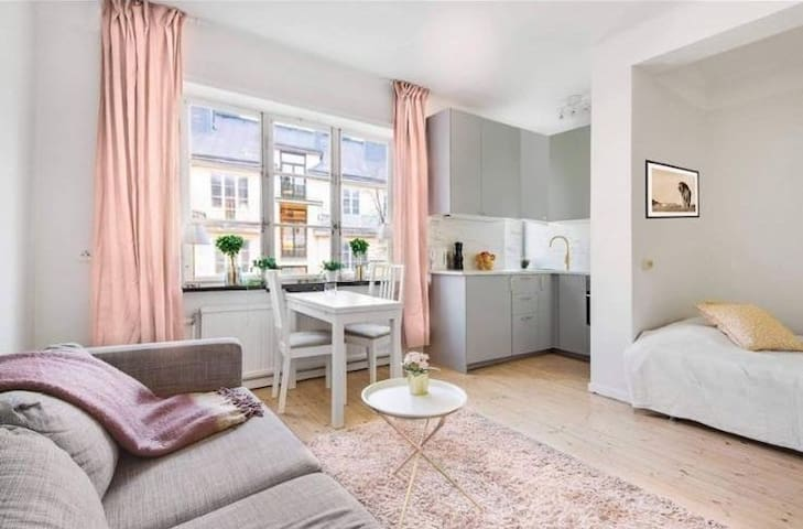 Cozy aprtment in Stockholm city
