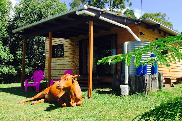 Pet Friendly Timber Gym Cabin