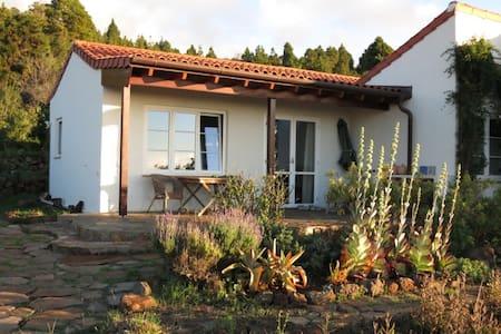 Finca Lomada - Wohnfühl-Apartment - Puntagorda