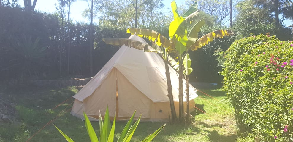 THE TENT IN GUESTHOUSEJANE