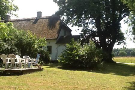 Idyllisk stråtækt hus i skoven - Askeby - House