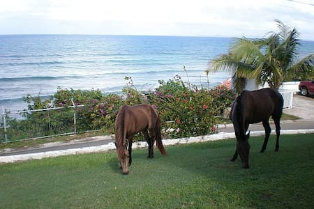 Bravos Sun & Sea Upper Guesthouse - Vieques - Huis