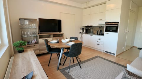 Modern 1-bedroom apartment, beautiful park view