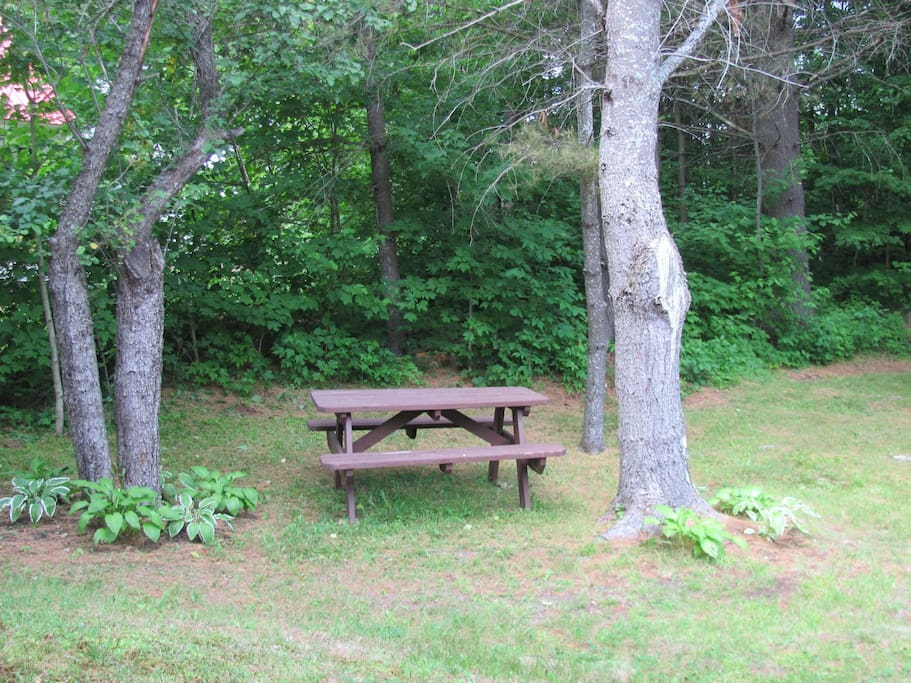Shaded picnic area
