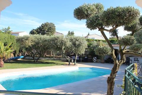 provençalsk hus med oliventræer og swimmingpool