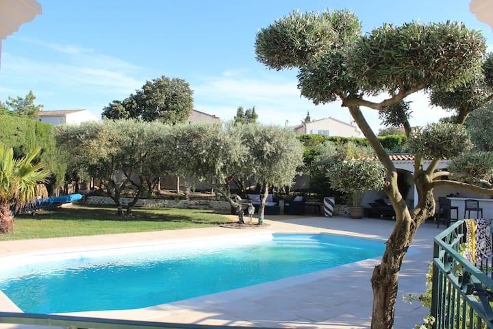 maison provençale avec ses oliviers et sa piscine