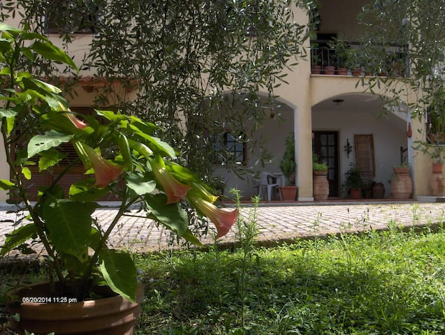relais in bilocale di campagna - Montemerano - Apartment