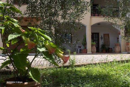 relais in bilocale di campagna - Montemerano