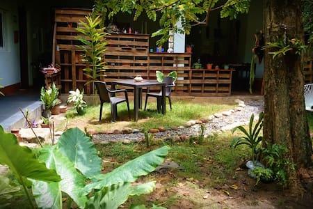 Backpacker en Tarapoto - Tarapoto - Bed & Breakfast