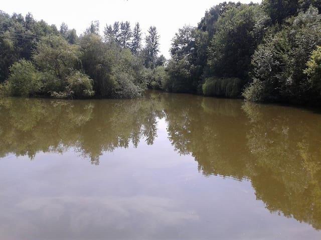 Carp fishing - Les Ressuintes