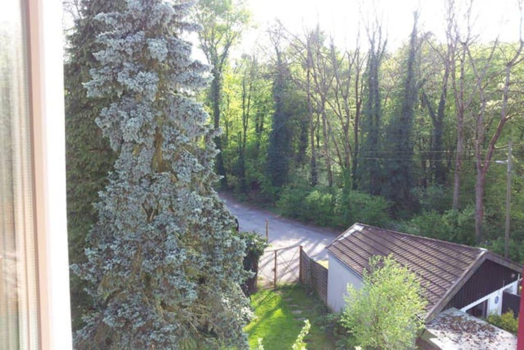 Aussicht aus dem Gästezimmer in den Garten