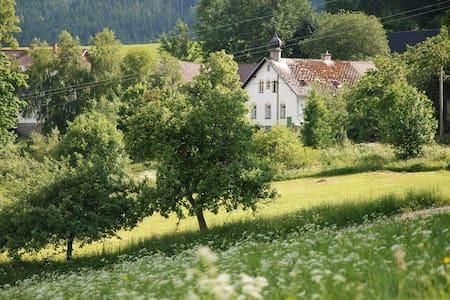 Šumava Holiday House  - Javoříčko  - Haus