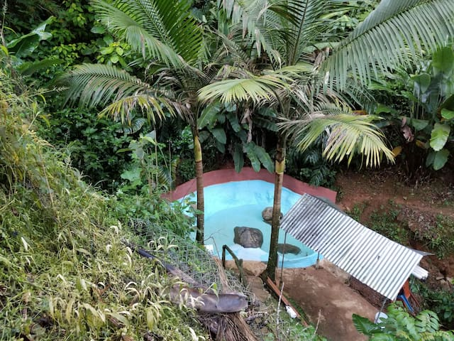Natural  Pool Home w/View (Sleeps 1-48)