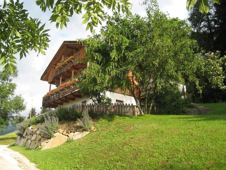 B&B Dolomiti, ospitalità contadina