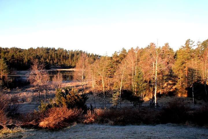 Et stille og fredfullt sted - Finsland  - House