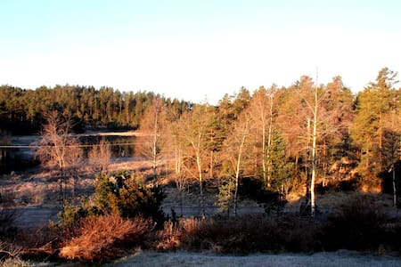 Et stille og fredfullt sted - Finsland