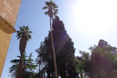 Donna Bianca - Casa Vacanza 2 - Specchia