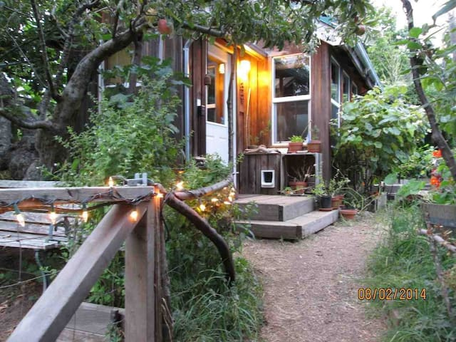 Secluded Eco-Cottage - Arcata - Houten huisje