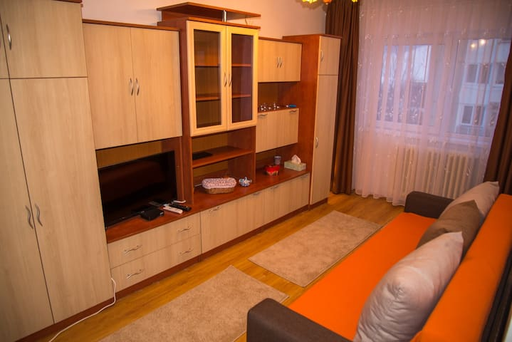 Cozy one bedroom apartment in Csikszereda