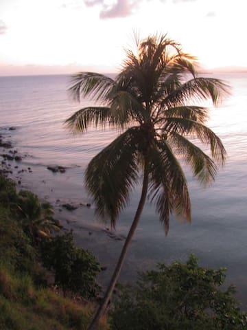 Hostel Bahia de Paraiso- Oceanfront - playa hucares - Дом