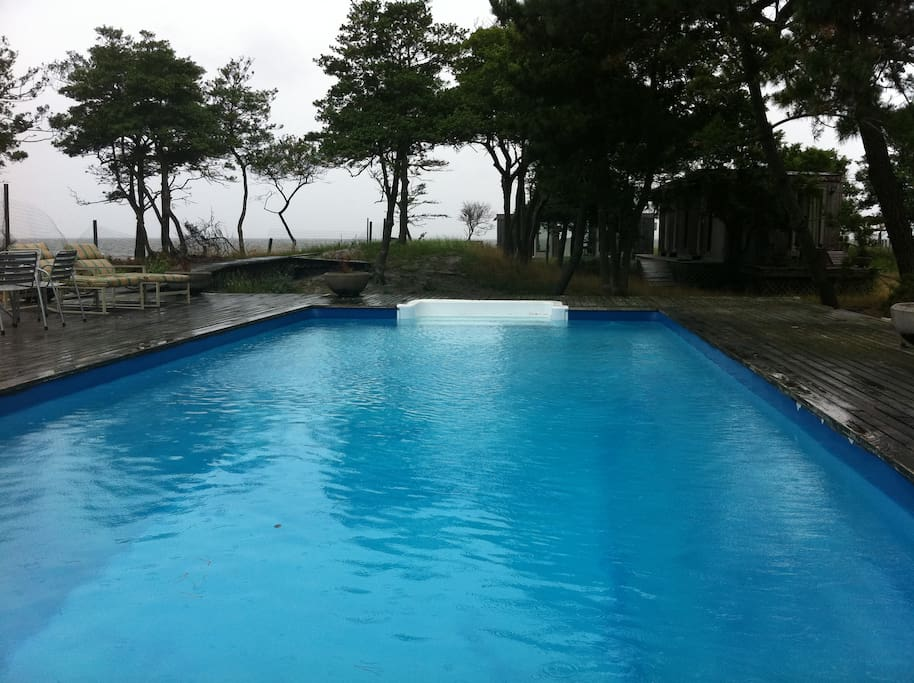 40 foot pool with deck with table and four lounge chairs - rare swimmer's pool in the Fire Island Pines