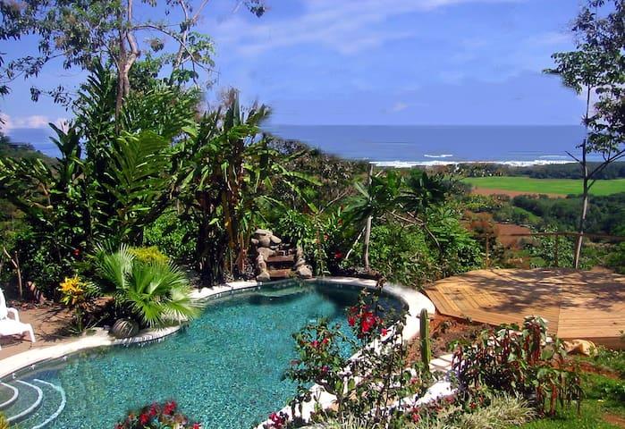 Ocean view in the jungle-Gekko Room