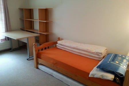 simple room in St. Gallen quiet and central - Sankt Gallen - 公寓