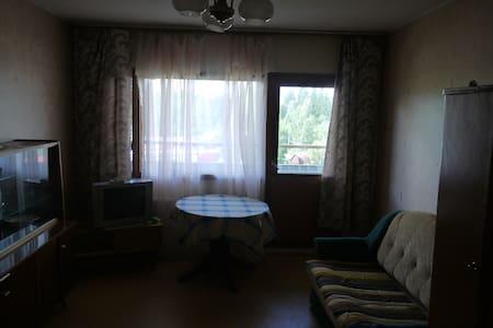 1-комнатная квартира в 5 эт. д.5 э. - Svetogorsk - Apartmen