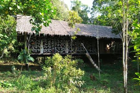 Rooms in jungle beach area #3