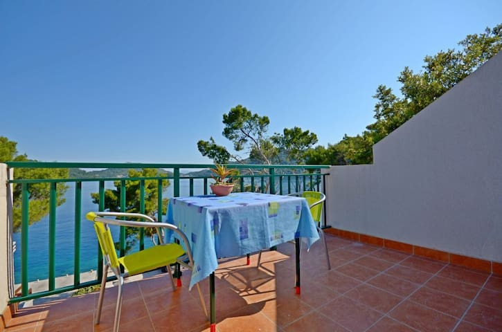 Studio Apartment, beachfront in Ubli, Terrace