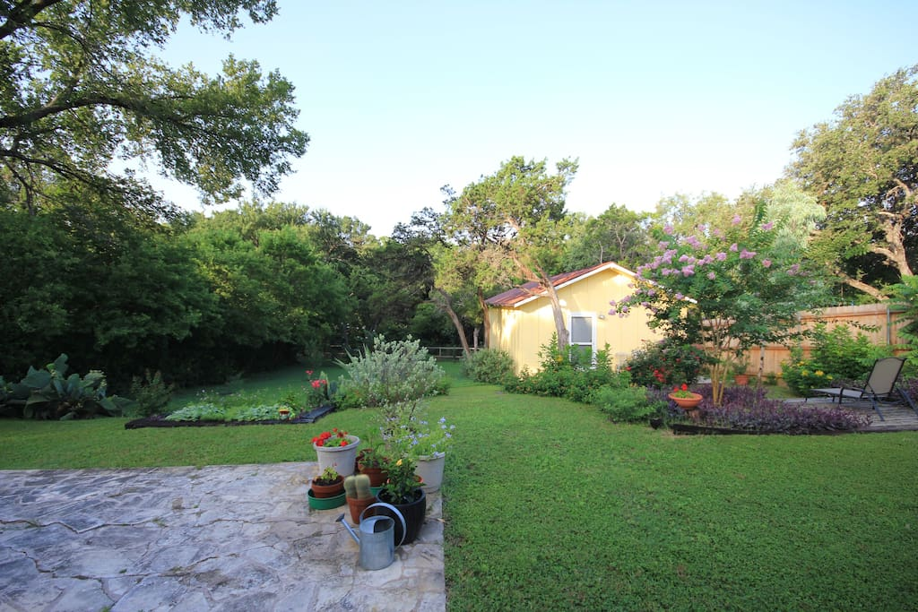 Gorgeous backyard on green belt