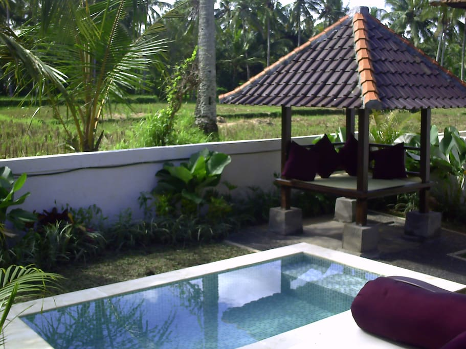 Your Private Plunge Pool Right Outside Your Door