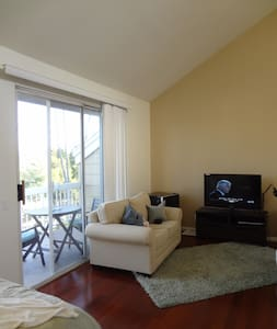 Spacious studio mile from the beach