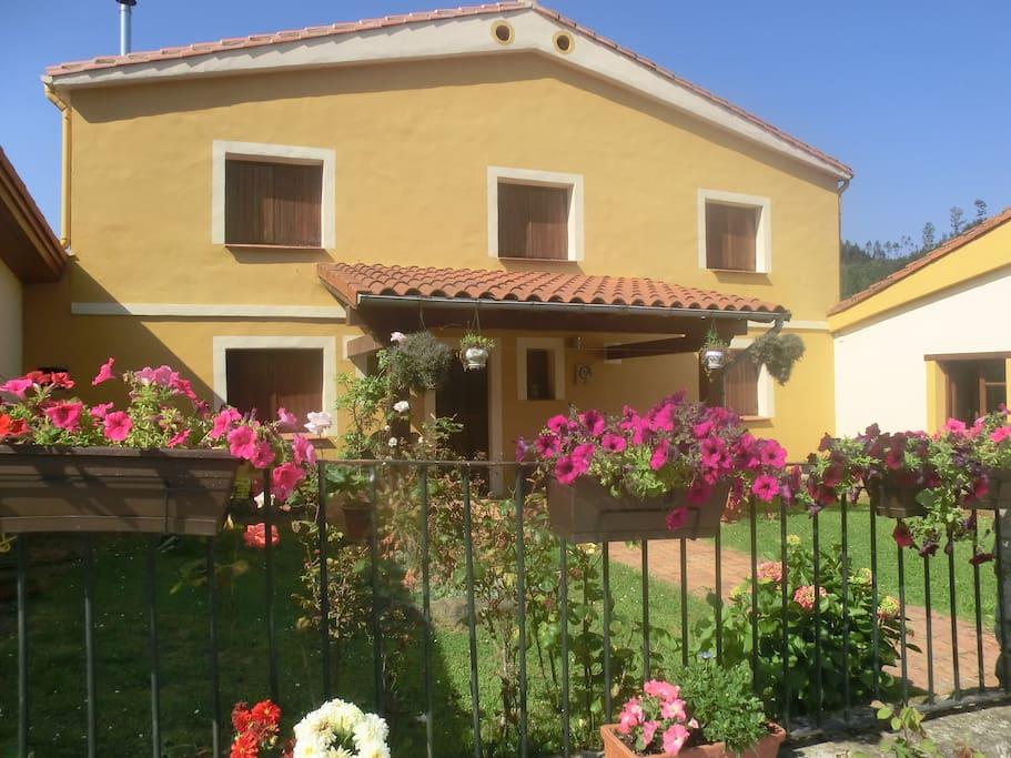 Vista exterior del jardín individual