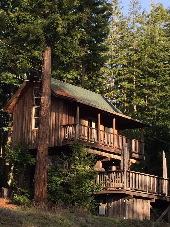 Unique Private Tree House Cabin