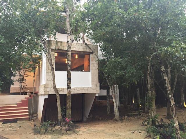 CASA DEL ARBOL JUNGLE Akumal, 2 bedrooms - Akumal - House