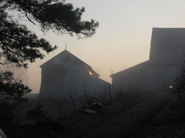An idyllic view of the driving shed and barn at daybreak.