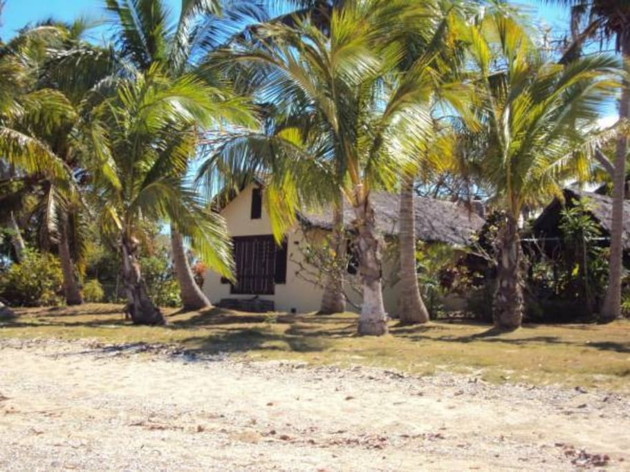 Your villa amongst the coconut palms