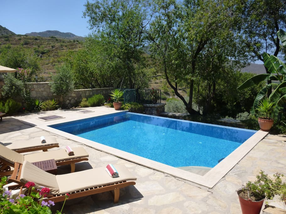 Villa Gelincik pool, sunbeds, umbrellas and shade from the mature almond trees