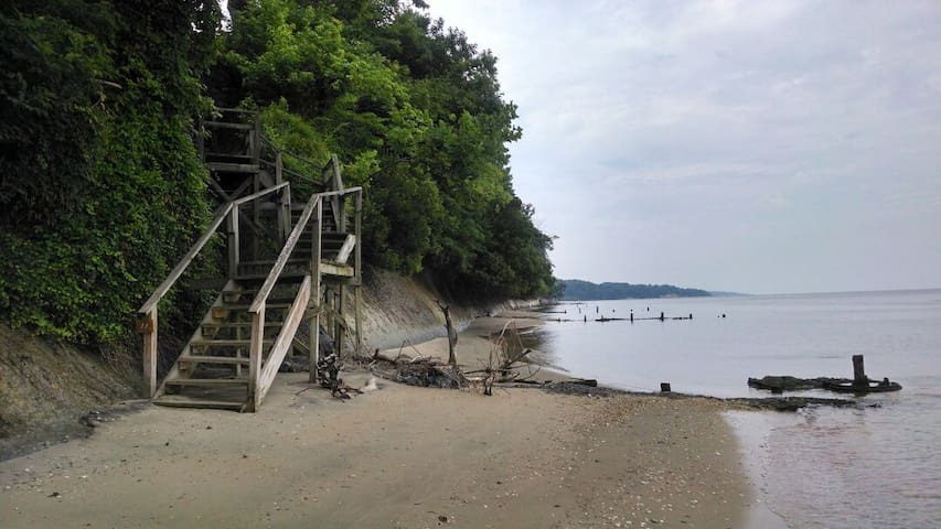 Best Bay Beach Fossil Tour near DC - Port Republic - Apartemen