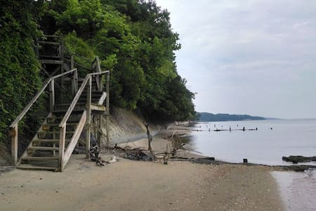 Best Bay Beach Fossil Tour near DC - Port Republic - Haus