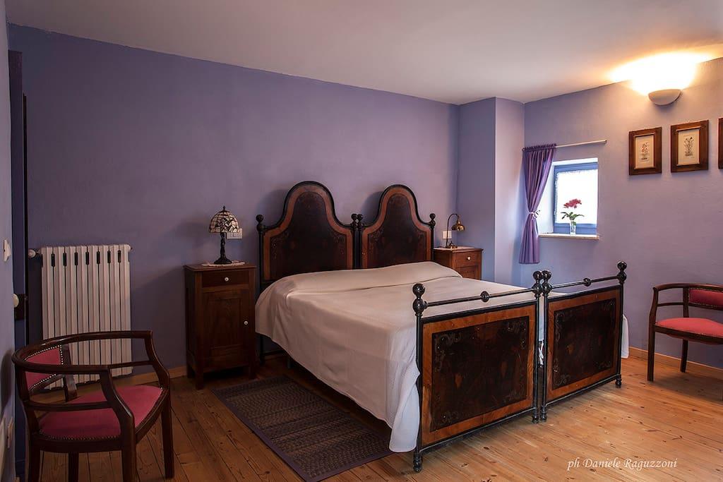 La camera Viola