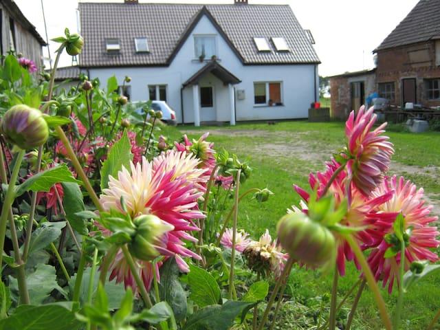 odpoczynek we wsi nad Bałtykiem - Kołobrzeg County - Altro