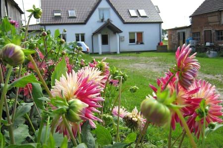 odpoczynek we wsi nad Bałtykiem - Kołobrzeg County