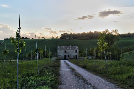 Amazing cottage in Le Marche - Montecassiano