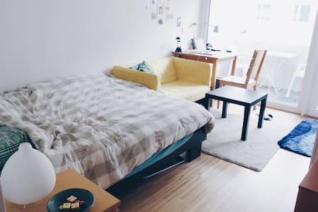 Gemütliche Einzimmerwohnung - Konstanz - Apartment