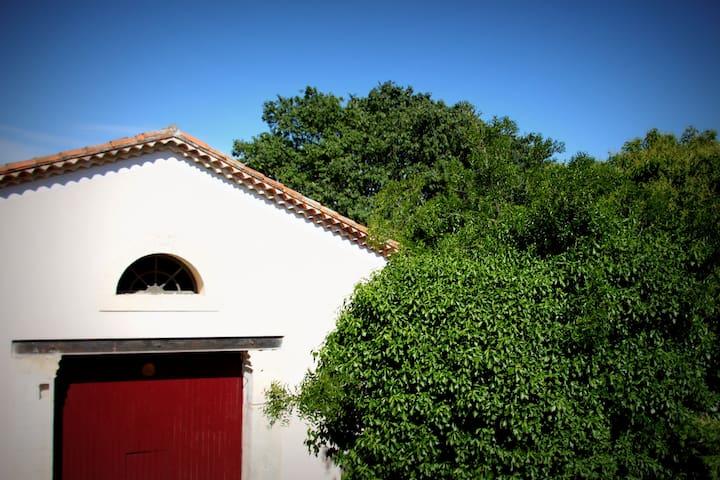 Appartement dans maison vigneronne - Saint-Brès, Hérault - Apartment