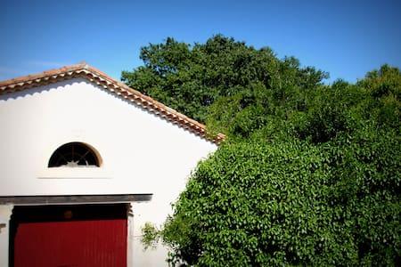 Appartement dans maison vigneronne - Saint-Brès, Hérault - 公寓