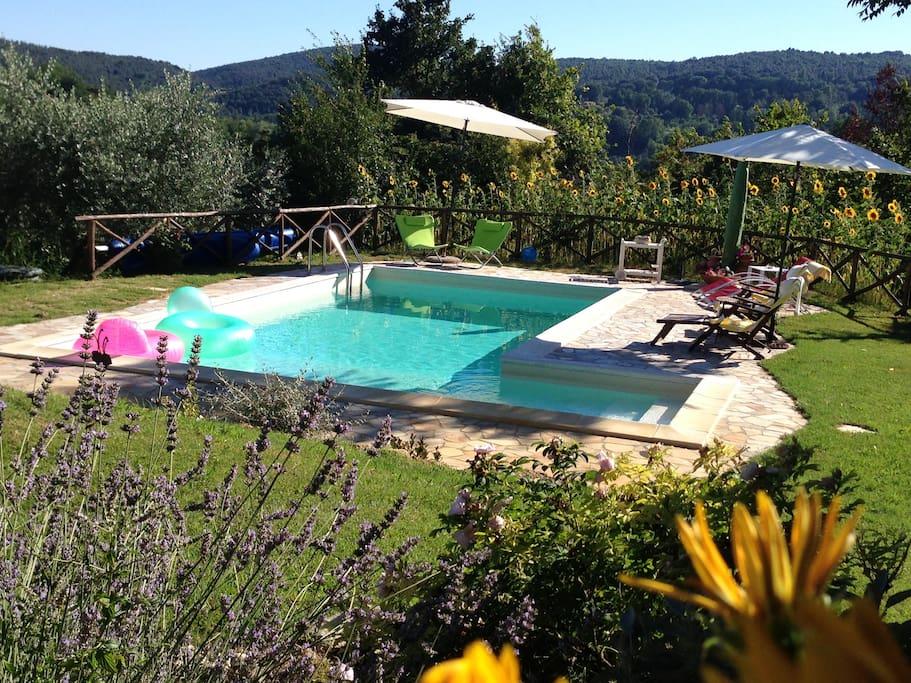 Panoramica della piscina di acqua salata